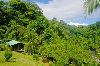 impact centers, permaculture, transformation, costa rica