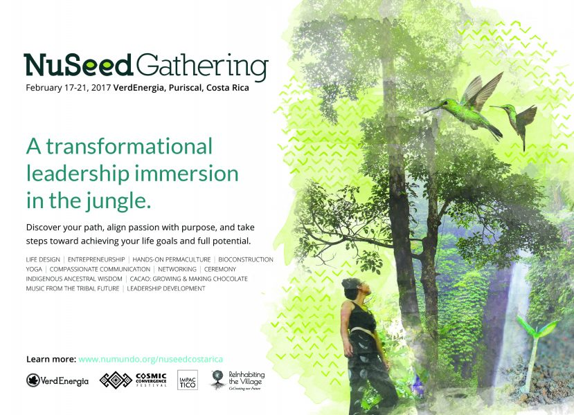 nuseed, gathering, journey, jungle