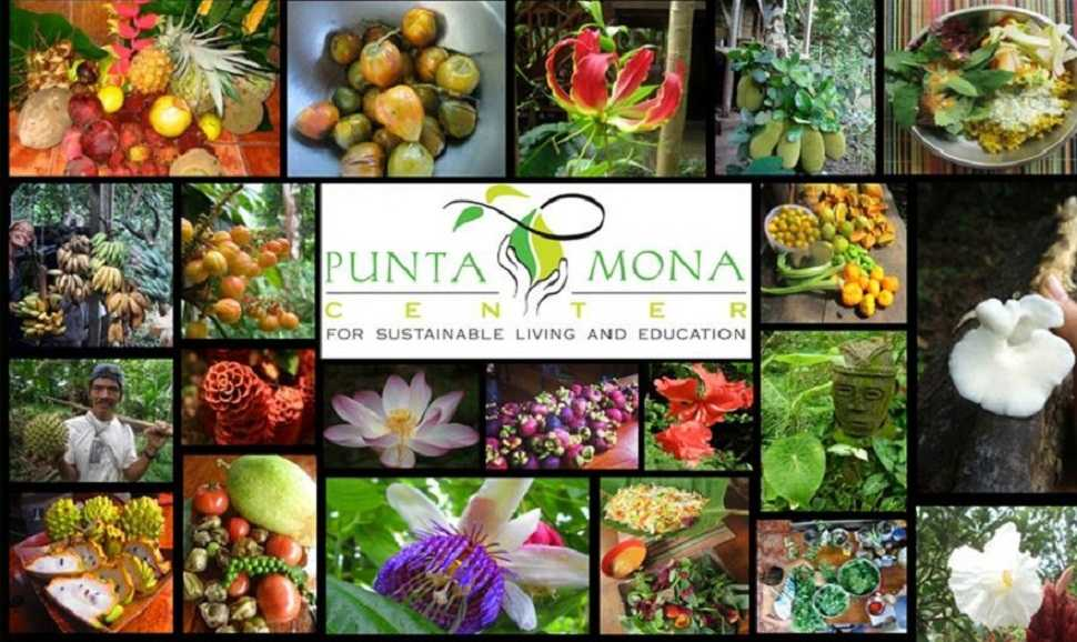 The inaugural Costa Rica Fruit Fest will be held at Punta Mona, regenerative impact center in Caribbean Costa Rican Paradise.