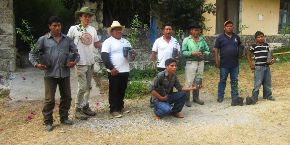 Ecocaravan Empowers Local Farmers with Permaculture in Guatemala