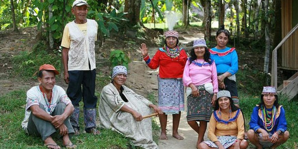 Visiting Permaculture and Plant Medicine Impact Centers in the Amazon – David Casey