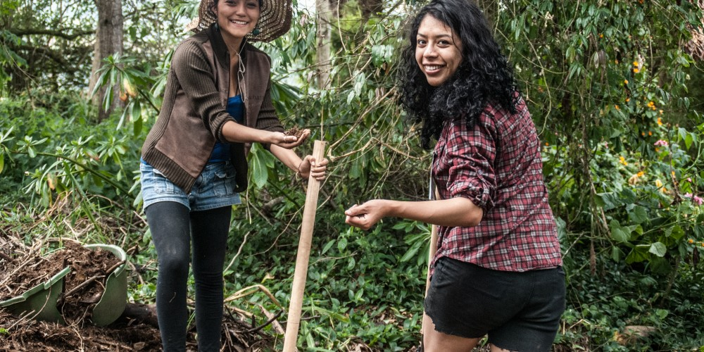 Igniting regeneration: A Latin American Permaculture Convergence in Colombia