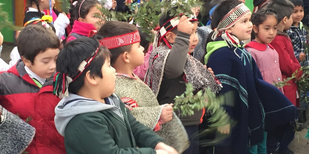 Earth People: An Immersion with Mapuche Indigenous People of Southern Chile