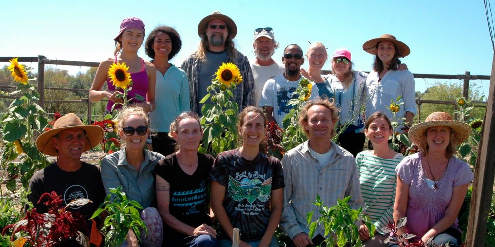6 Steps to Starting a Community Garden