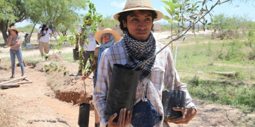 Greening the Sacred Desert: Permaculture workshop and hands on learning experience in Wirikuta, Mexico
