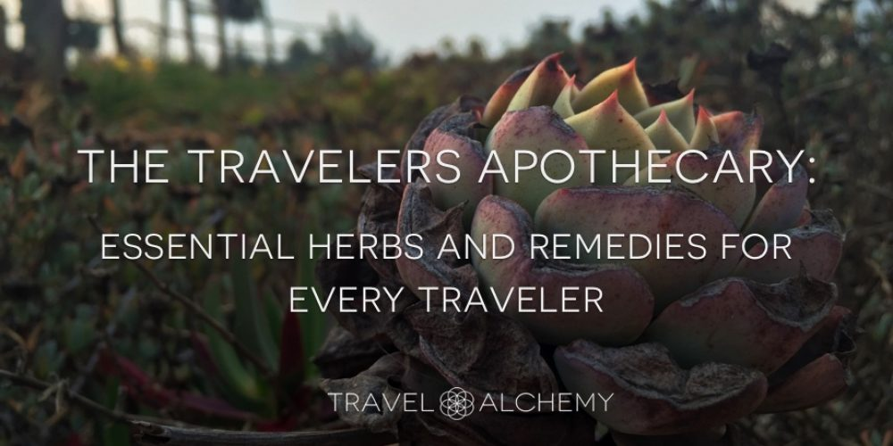 The Traveler's Apothecary: Essential Herbs and Remedies For Every Traveler