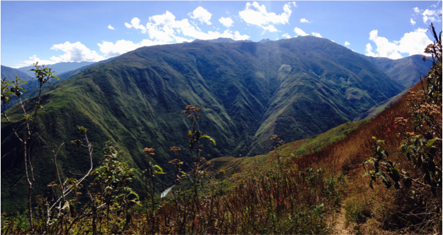 Our home in the Mapacho Valley where the Andean Mountains and the Amazon rainforest meet.