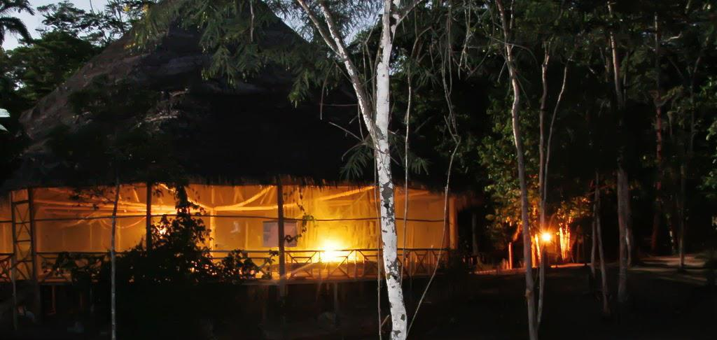 ayahuasca, healing, ceremony, plant medicine, temple of the way of the light